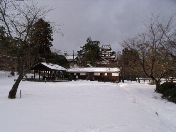 p20110116n11