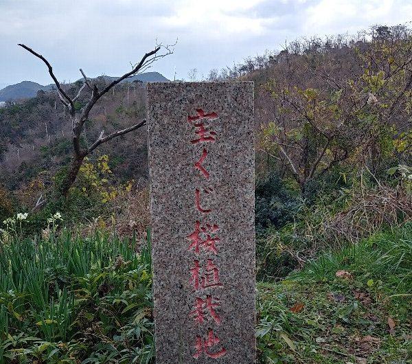 【松江石碑】島根町「宝くじ桜植栽地」